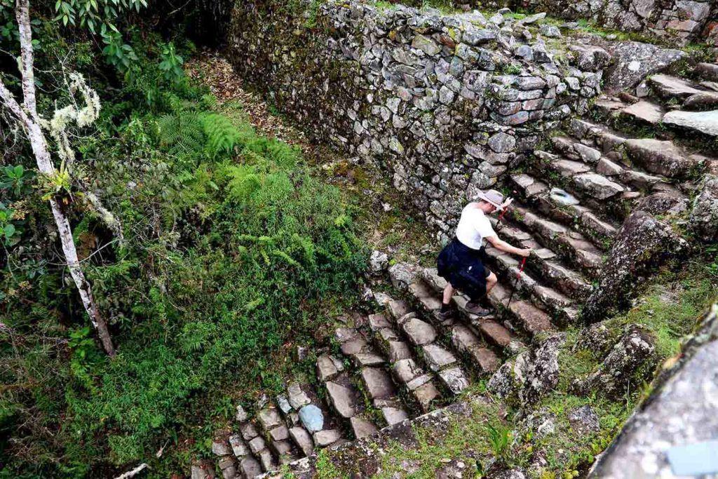 Inka tral the gringos killer pass