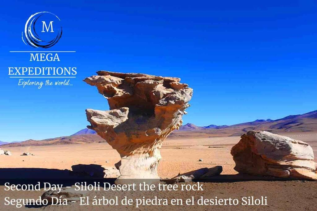 Second Day - Siloli Desert the tree rock in the Salt Flat of Bolivia
