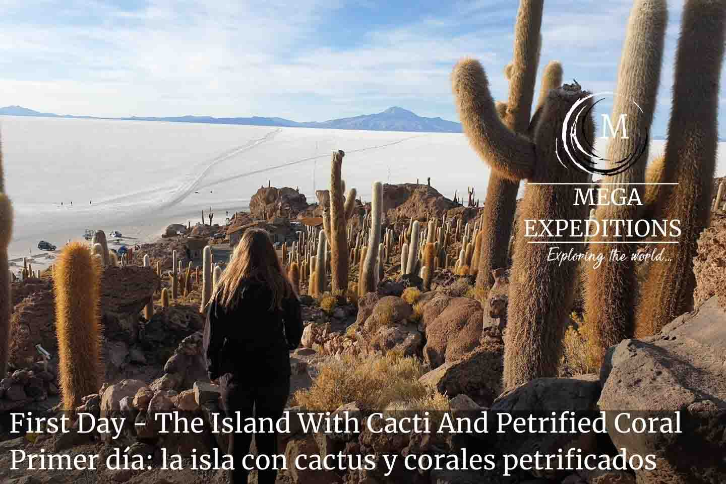 First Day - The Island With Cacti And Petrified Coral in uyuni salt flat