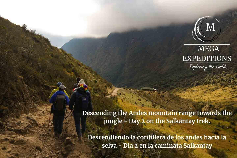 Into the Jungle in the Salkantay trek