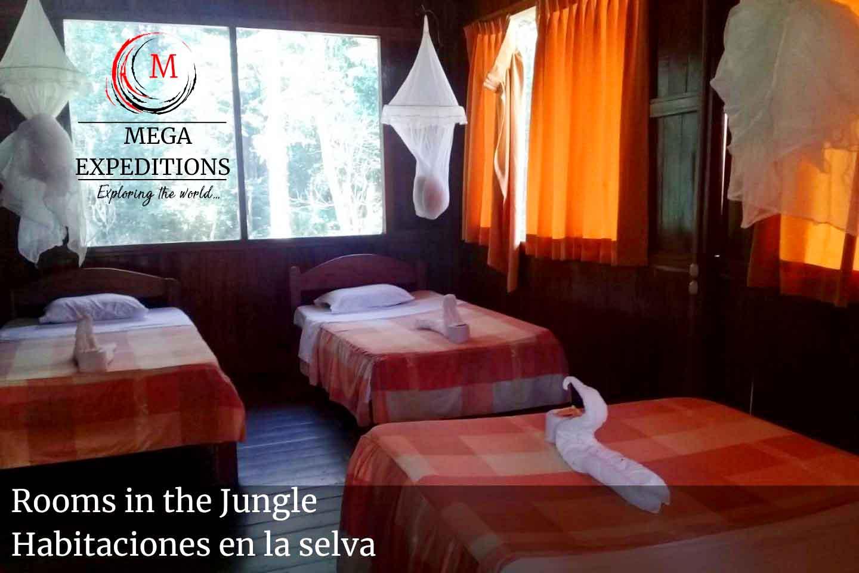 Lodge rooms jungle in the Puerto maldonado Lodge into the Amazon Jungle